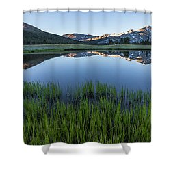 Meadow Reflections  Shower Curtain
