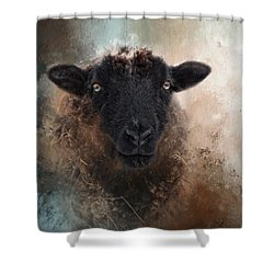 Shower Curtain featuring the photograph Meadow by Robin-Lee Vieira