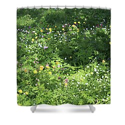 Meadow With Spring Flowers Shower Curtain
