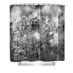 Meadowgrasses Shower Curtain