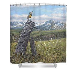 Meadowlark Serenade Shower Curtain by Kim Lockman