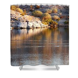 Meads Fascination Shower Curtain