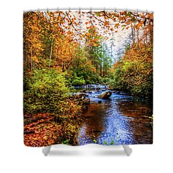 Shower Curtain featuring the photograph Meandering In The Mountains by Debra and Dave Vanderlaan