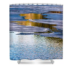 Meandering Towards Spring Shower Curtain