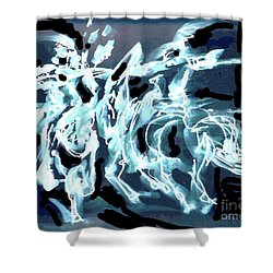 Medieval Forces Shower Curtain