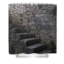 Medieval Wall Staircase Shower Curtain
