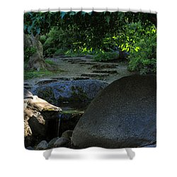 Meditation Path Shower Curtain