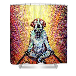 Meditation Shower Curtain by Viktor Lazarev