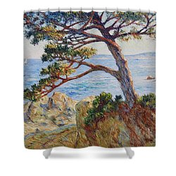 Mediterranean Sea Shower Curtain
