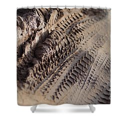 Medium Cu Motorcycle And Car Tracks In Mud Shower Curtain