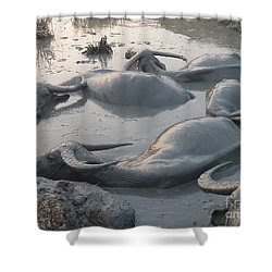 Shower Curtain featuring the photograph Medium Shot Of A Group Of Water Buffalos Wallowing In A Mud Hole by Jason Rosette