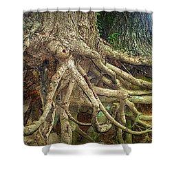 Medusa Shower Curtain by Cricket Hackmann