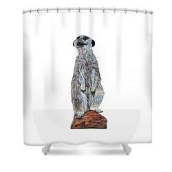 Meer Curiosity Custom Shower Curtain