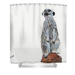 Meer Curiosity Shower Curtain