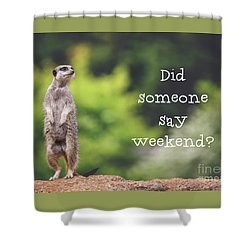 Meerkat Asking If It's The Weekend Yet Shower Curtain