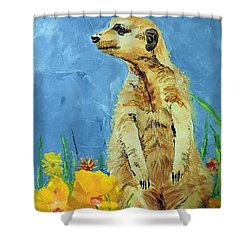Meerly Curious Shower Curtain by Tom Riggs