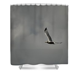 Shower Curtain featuring the photograph Meet Me On The Other Side by Ramona Whiteaker