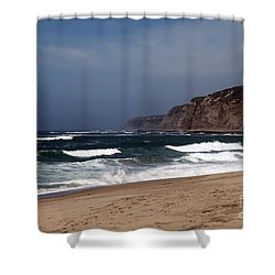 Meeting Of The Minds Shower Curtain by Amanda Barcon