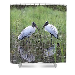 Meeting Of The Minds Shower Curtain by Carol Groenen