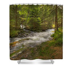 Meeting Of The Streams Shower Curtain