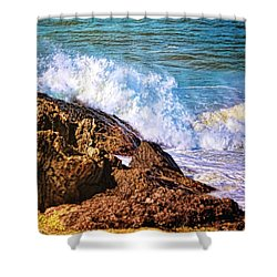 Shower Curtain featuring the photograph Meeting Place by Wallaroo Images