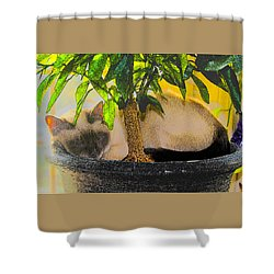 Meezer Tree Shower Curtain