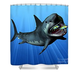 Megalodon Shower Curtain by Corey Ford
