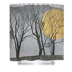 Megamoon Shower Curtain by Ann Brain