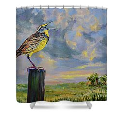 Melancholy Song Shower Curtain by AnnaJo Vahle