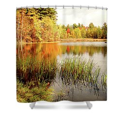 Shower Curtain featuring the photograph Mellow Days by Betsy Zimmerli