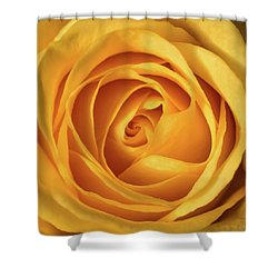 Mellow Yellow Rose Square Shower Curtain