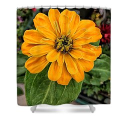 Mellow Yellow You Shower Curtain