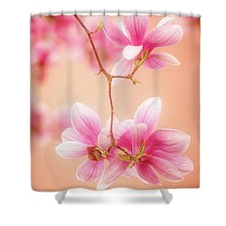 Melodies Of Spring  Shower Curtain