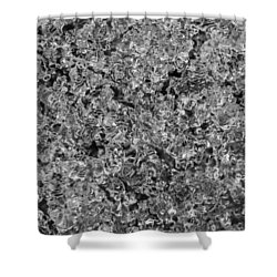 Shower Curtain featuring the photograph Melting Snow by Chevy Fleet
