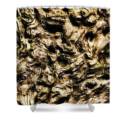 Melting Wood Shower Curtain by Wim Lanclus