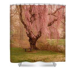 Memories - Holmdel Park Shower Curtain