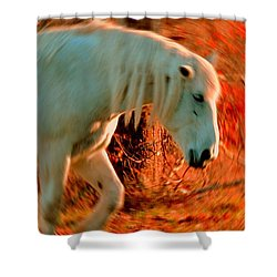 Memories At Sunset Shower Curtain