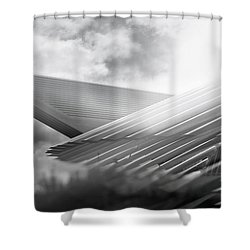 Memories Of A Future Past Shower Curtain