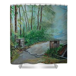 Shower Curtain featuring the painting Memory Bridge by Leslie Allen