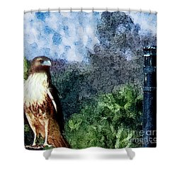 Shower Curtain featuring the photograph Menifee Falcon by Rhonda Strickland