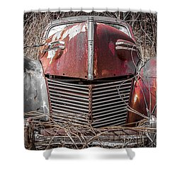 Mercury 8 Shower Curtain