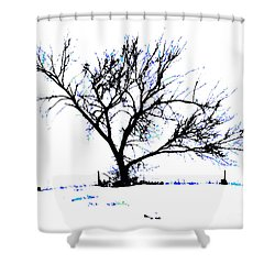 Meredith Blue Shower Curtain