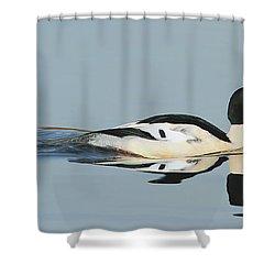 Merganser Panorama Shower Curtain
