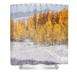 Merging Seasons Shower Curtain