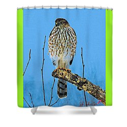 Merlin    Not The Majician Shower Curtain by John Selmer Sr
