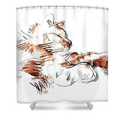Merph Chillin' - Pet Portrait Shower Curtain