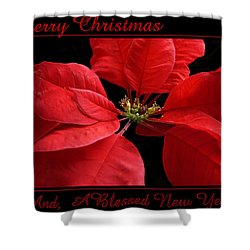 Merry Christmas 2015 Shower Curtain by Judy Johnson