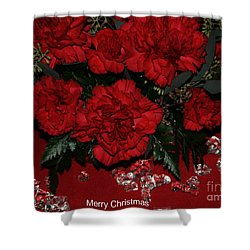 Merry Christmas Shower Curtain by Kathleen Struckle