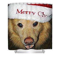 Merry Christmas Shower Curtain by Sarah Loft