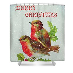 Merry Christmas Snowy Bird Couple Shower Curtain